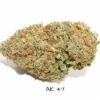 AK-47 strain ( Psychonoathealers.com)